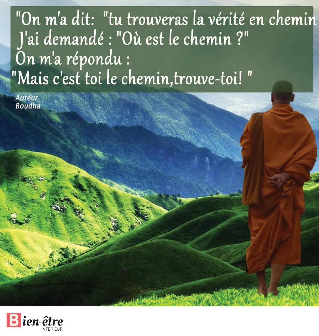 Les Plus Belles Citations De Bouddha Bien être Intérieur